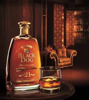 Black Dog  Years Price In Bangalore