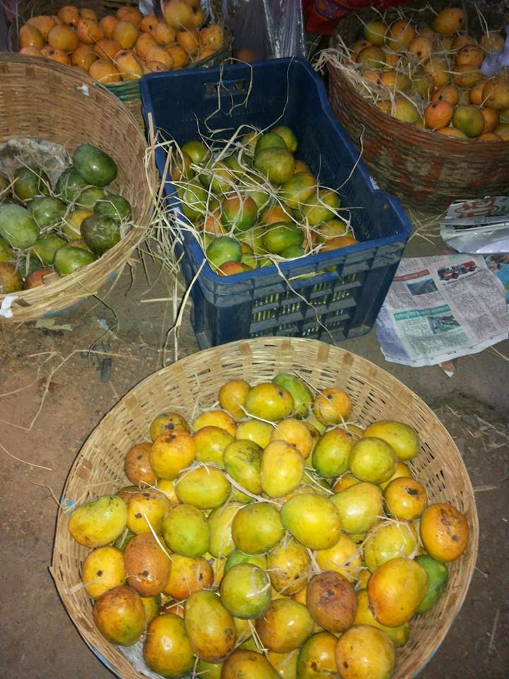 Mangoes in Goa
